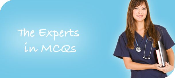 The Experts in